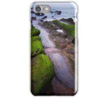 Dragon Ridges iPhone Case/Skin