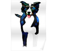 Colourful Canine Poster