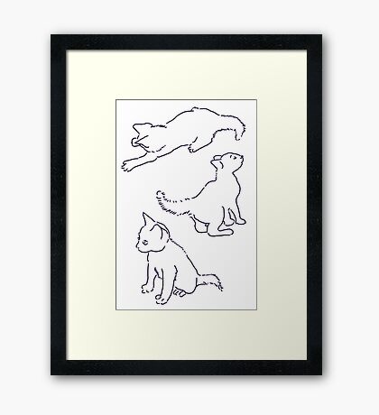 Kitty playing on white Framed Print