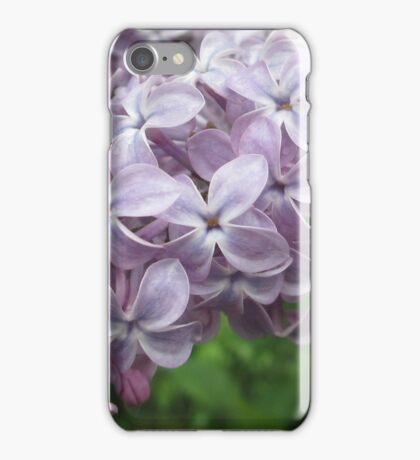 Lilac Beauty iPhone Case/Skin