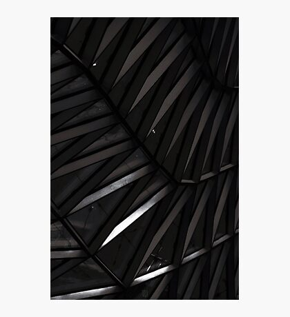 Structure Photographic Print