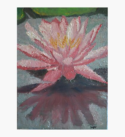 Water Lily in Oils Photographic Print