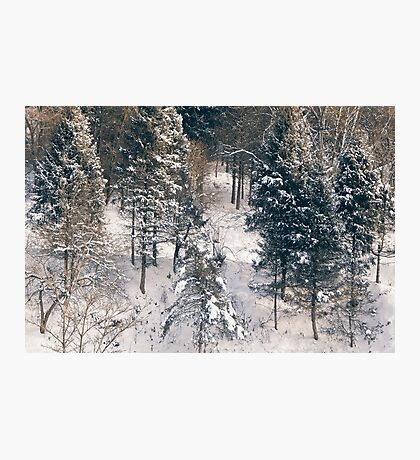 White Covered  Photographic Print