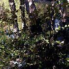 Tiled Riverbank by Chris Gudger