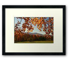 An Autumn's View Framed Print