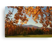 An Autumn's View Canvas Print