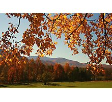 An Autumn's View Photographic Print