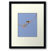 Apple Branch and a Pollinator in Serenity Framed Print