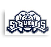 steelhounds Metal Print