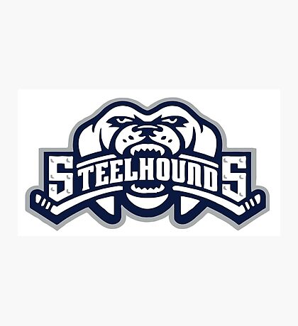 steelhounds Photographic Print