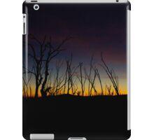 Sunset Australia iPad Case/Skin