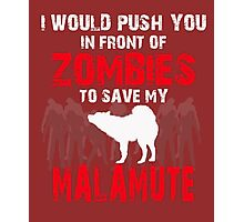 Front Of Zombies Malamute Photographic Print