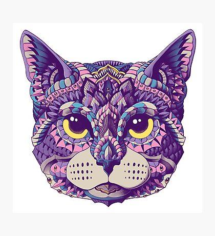 Cat Head (Color Version) Photographic Print