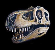 T-rex skull by nategradyart