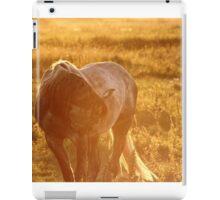 15.9.2014: Horse and Midges iPad Case/Skin