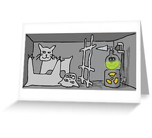 Schrodinger's cat, quantum mechanics Greeting Card