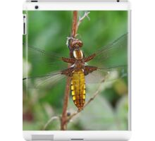 Female Broad-bodied Chaser iPad Case/Skin