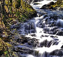 Flowing Waterfall by closetpainter