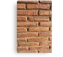 Vintage red brick wall texture background Canvas Print