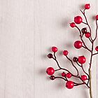 Red berries holly on white by Ana Marques