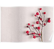 Red berries holly on white Poster