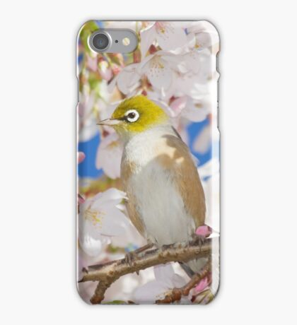 Silvereyes in Spring Blossoms iPhone Case/Skin