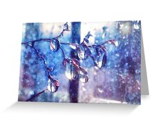 Crystal water drops on a branch Greeting Card