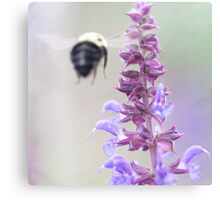 Purple And Bumble 2 Canvas Print