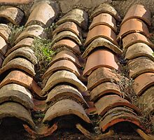 Italian Roof Tiles by A Portrait  of Europe