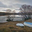 Winter at Lake McGregor by Peter Kurdulija