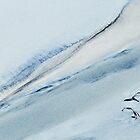 Natural Lines... by Angelika  Vogel