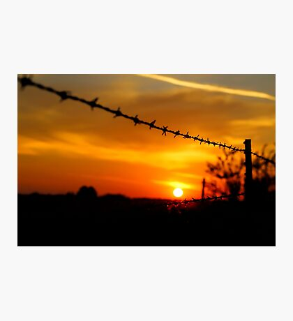 Barbed wire sunset (landscape) Photographic Print