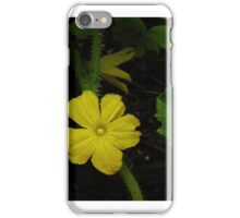 Cucumber iPhone Case/Skin