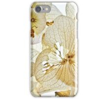 Radiant and Torn iPhone Case/Skin