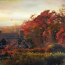 Tudor in Autumn by Jessica Jenney