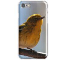 Pine Warbler iPhone Case/Skin