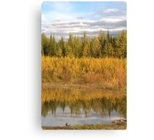 Reflected Colours Canvas Print