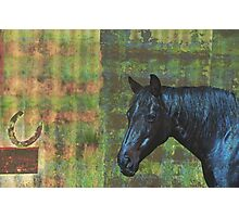 Rustic Textured Horse Photographic Print