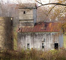 Abandoned Barn - Abadoned Buildings Challenge Winner by lorilee