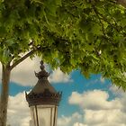 Old Parisienne Lamp by Elaine Teague