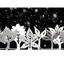 Fantasy winter snow scene  Photographic Print