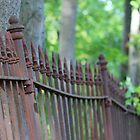 Wrought Iron Fence in the Summer by Gilda Axelrod