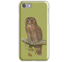 Lonely Owl Realistic Painting iPhone Case/Skin