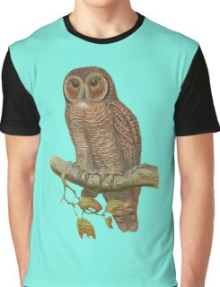 Lonely Owl Realistic Painting Graphic T-Shirt