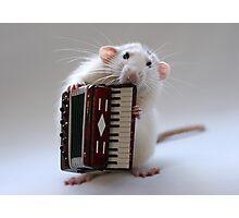 The accordeonist. Photographic Print