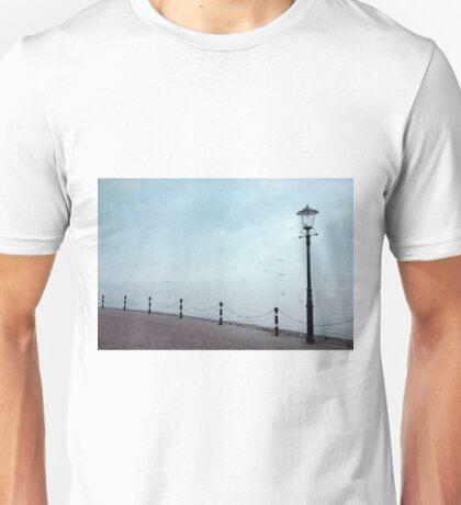 Desolate Unisex T-Shirt