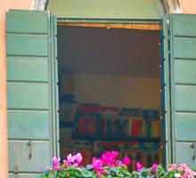 Flowers on the Balcony, Venice Sticker