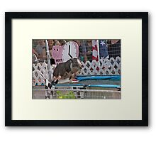 Flying Pig Framed Print