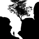 Tree and Hiker by PaulBradley