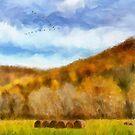Hay Bales by Lois  Bryan